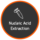 Solar module - Nucleic Acid Extraction